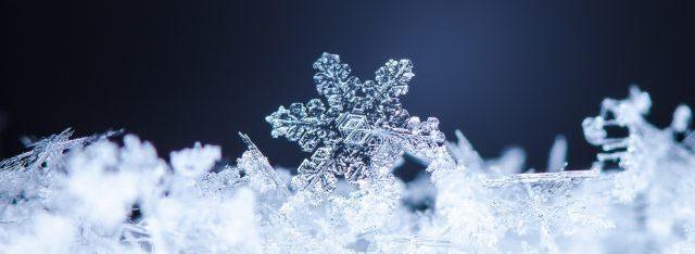 VCs are like Snowflakes  Yohei Nakajima